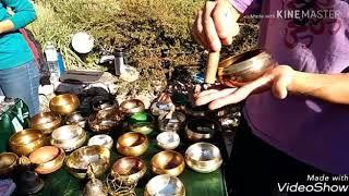 Никитский ботанический сад. День народного единства.