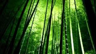 As 7 verdades do Bambu