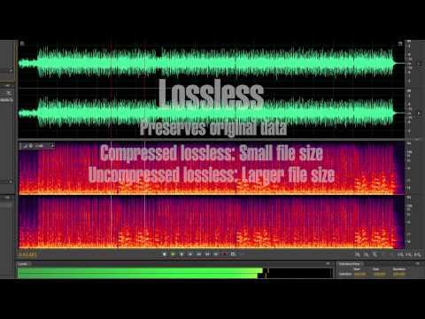 Lossy vs Lossless Audio