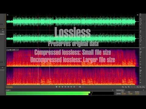 Lossy vs Lossless Audio
