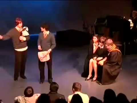 Best of Ron Joey Richter  A Very Potter Musical