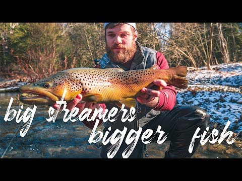 Wild Brown Of A Life Time | Big Streamers For Bigger Fish