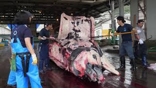 【4K60P】クジラ解体(房総和田漁港)