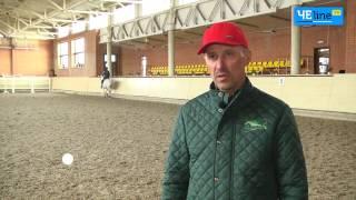 Племенное хозяйство «Бреч» - цветник ганноверских лошадей в Украине