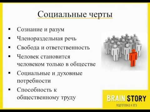 2.1.3 Человек как социальное существо. ОГЭ по Обществознанию