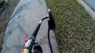 TrimmerPlus Edger Attachment Demo - Edging Sidewalks and Driveway