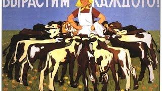 Правительство разъяснило смысл необходимости ограничения в ведении домашнего скота