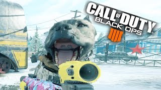 UP CLOSE AND PERSONAL | BLACK OPS 4 (PC 2080 TI MAX SETTINGS 4K)