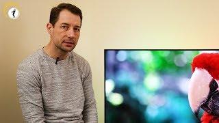 Philips OLED+ 903 TV im Überbl…