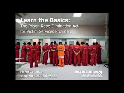WEBINAR — Learn the Basics: The Prison Rape Elimination Act for Victim Services Providers