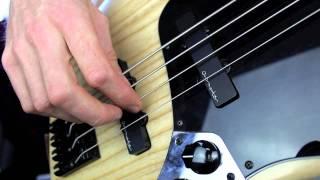 Right hand technique for Bass (Raking & Alternate plucking) - (L#37)