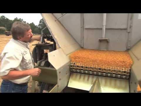Rain Helps, Hinders South Georgia Farm Operations