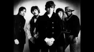 Steve Miller Band - Wild Mountain Honey (Live)