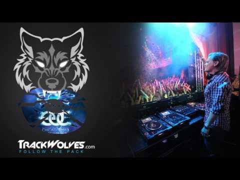 Avicii - Live @ Electric Daisy Carnival [EDC Chicago 2013] - 25.05.2013