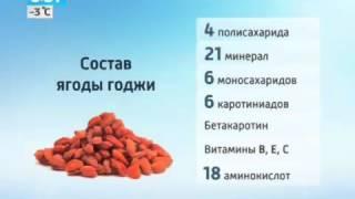 ягоды годжи в аптеках новосибирска
