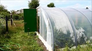 видео: Самодельная теплица из пластиковых труб и мои растения Июнь 2017
