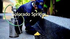 Bed Bug Treatment Cost Colorado Springs Co Pest Ntrol Phoenix Az