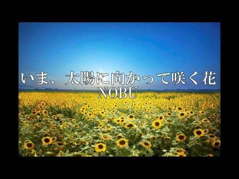 『いま、太陽に向かって咲く花』N O B U