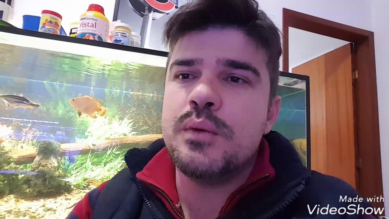 VÍDEO AULA 01 : O AQUÁRIO DE ÁGUA DOCE CURSO GRATUITO DE AQUARISMO