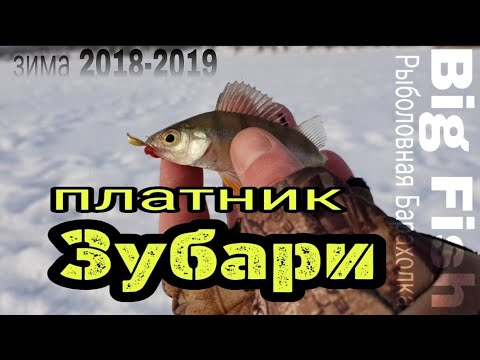 Зимняя рыбалка 2018-2019!  Город Болхов (пруд Зубари) Разведка платного водоёма!!!