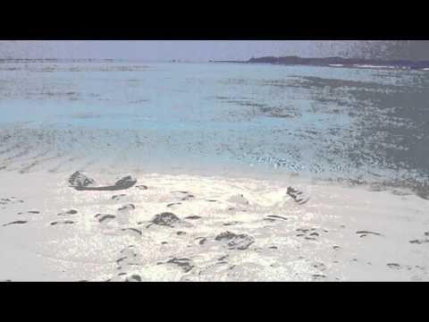 カヌーで行った百合ヶ浜からのパノラマ風景