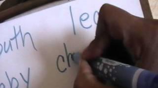 Lyric Reading Handwritten Words (22 months)