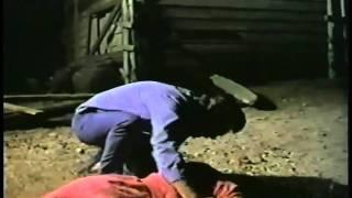 Crowhaven Farm (1970) P2