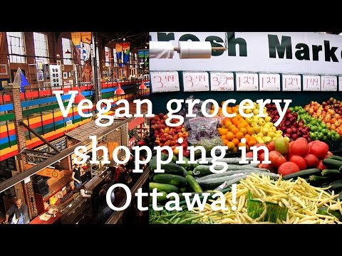 vegan grocery shopping | holisticmaya
