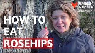 How to Eat Rosehips