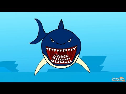 Sharks - Creepy Sea Creature Facts | Mocomi Kids