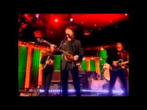 avila cover all shook up lyrics Suzi quatro - all shook up uk - 1973 suzi quatro (lyrics) suzi quatro angel avila ashes remain austin webb.