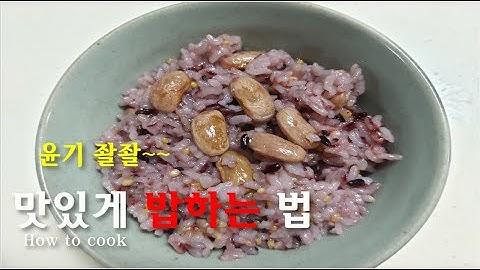쿠쿠밥솥 밥하는 법/잡곡밥 황금비율/how to cook rice with a rice cooker