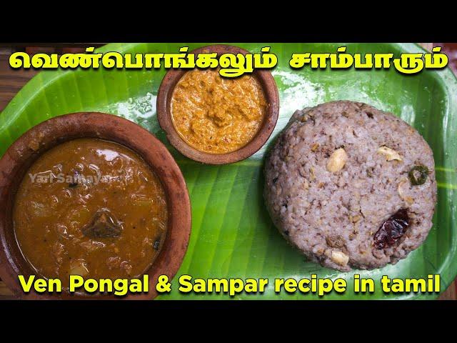 தைத்திருநாளில் ஸ்பெஷல் வெண்பொங்கலும் சாம்பாரும்  | Ven Pongal & Sampar recipe in Tamil | Thai Pongal