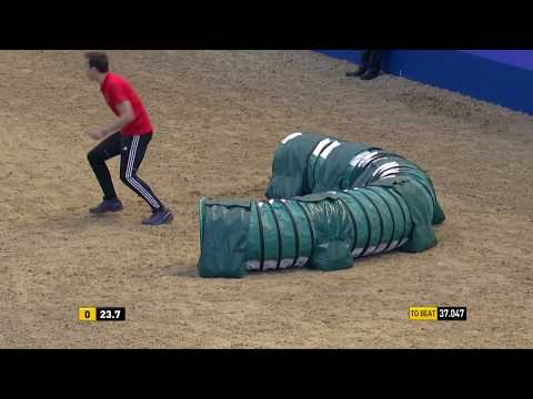 The Kennel Club Large Senior Dog Agility and Jumping Grand Prix at Olympia 2018