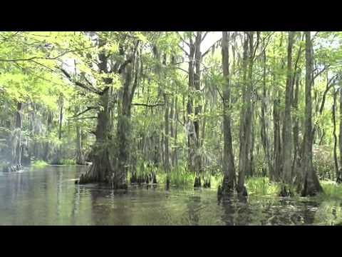 Louisiana Visit