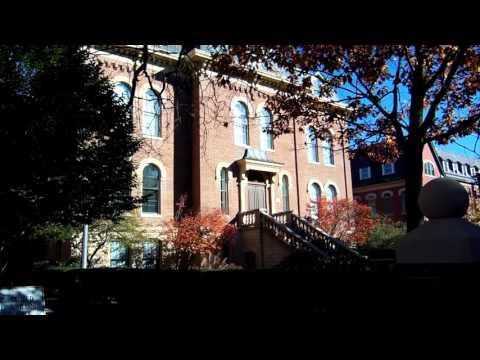 University of Illinois at Urbana-Champaign, Fall Foliage