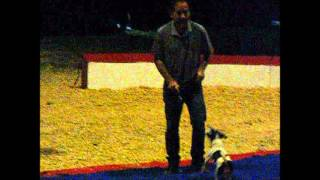 Zippos Circus Dog Training Open House 2015