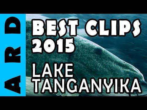 Lake Tanganyika - 2015