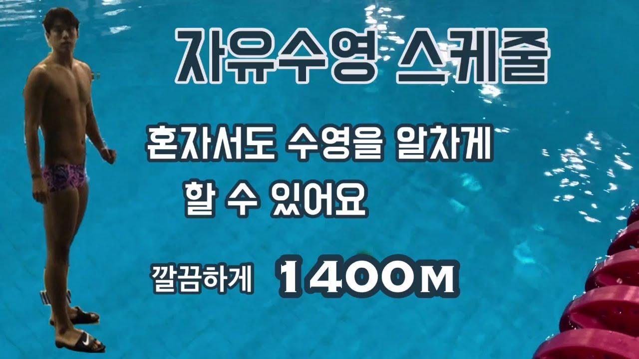 SLswim_자유수영 스케줄 (혼자서도 의미있게 수영하고 오기)
