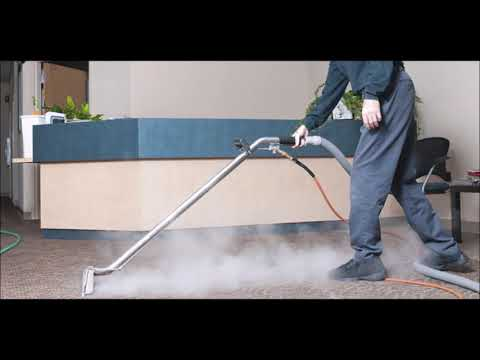 Best La Vista NE Carpet Cleaning Services and Cost| MCC Cleaning Omaha