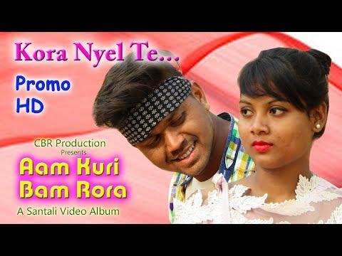 Kora Nyel Te | Album - Aam Kuri Bam Rora | New Santali Album 2018 | Promo
