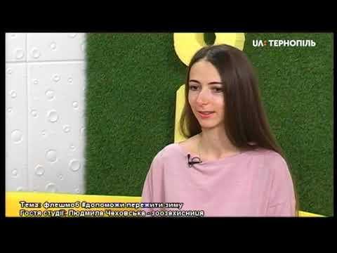 UA: Тернопіль: Гість у студії:  Людмила Чеховська
