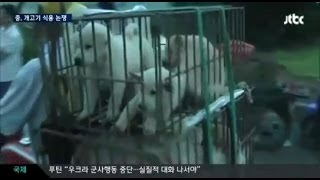 韓国人「鯨狩りみたいな未開文化と一緒にすんな、犬はかわいいし美味し...