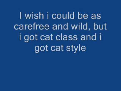 Stray Cat Strut Lyrics