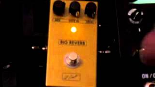 zcat pedals big reverb