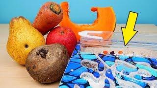 Реакция Африканских Муравьев на наши овощи и фрукты! Что они выберут? alex boyko