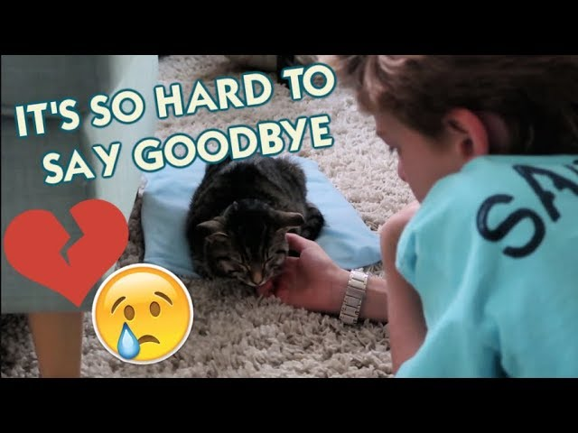 it-s-so-hard-to-say-goodbye