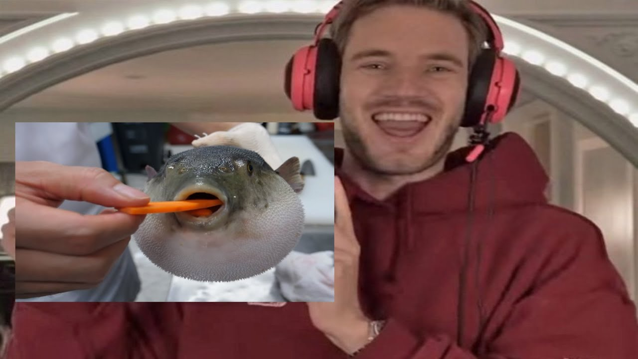 Download PewDiePie Reacts To: Pufferfish Eating Carrot (4K)