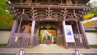 大聖院と豊国神社の紅葉を愛でようと小さな旅をしました。 時期が時期だ...