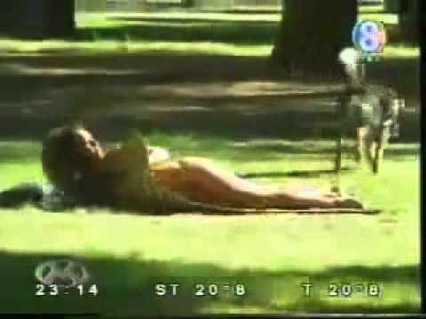 cachorro que gosta de sexo muito engraçado from YouTube · Duration:  1 minutes 52 seconds